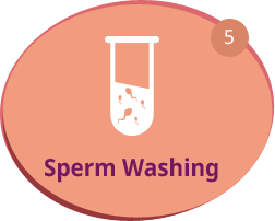Sperm Washing